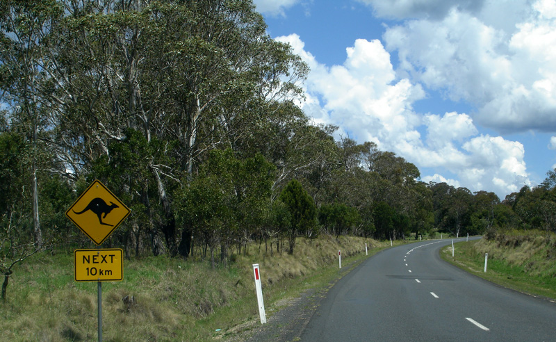 0120 Australia Day 7 1005 Highway 3 roo sign